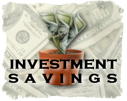Investment Savings