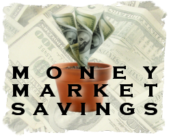 Money Market Savings