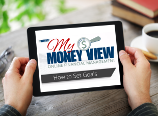 My Money View Setting Goals